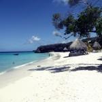Curacao fever