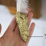 glitter diy feathers